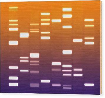 Dna Purple Orange Wood Print by Michael Tompsett