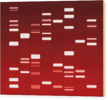 Dna Red Wood Print by Michael Tompsett