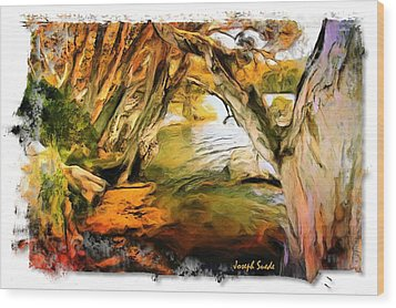 Wood Print featuring the photograph Do-00268 Trees On Water In Avoca Estuary by Digital Oil