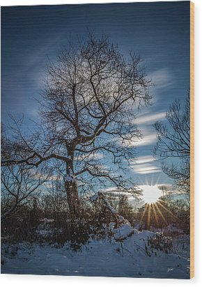 Wood Print featuring the photograph Do You Believe In Ents? by Davorin Mance