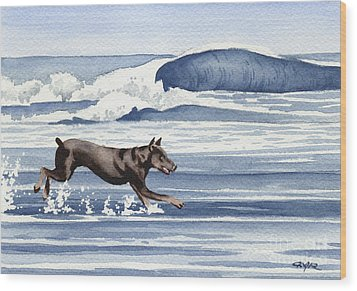 Doberman At The Beach  Wood Print by David Rogers