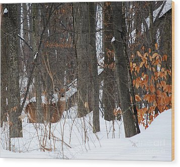 Wood Print featuring the photograph Doe In Woods by Lila Fisher-Wenzel