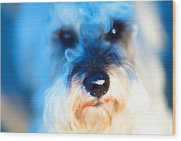 Dog 2 . Photo Artwork Wood Print by Wingsdomain Art and Photography