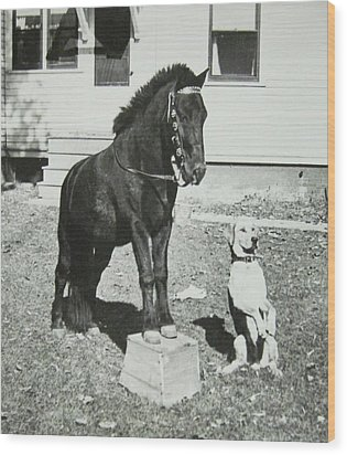 Dog And Pony Show Wood Print by Krista Barth
