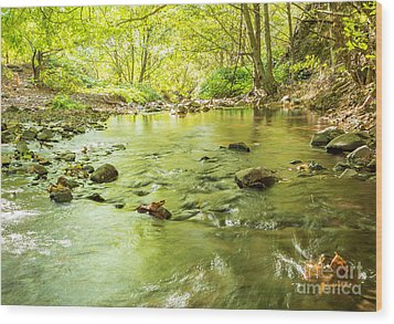 Dog Creek Wood Print by Linda Steider