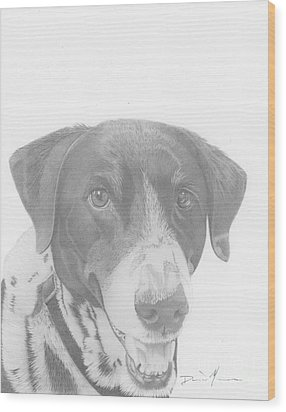 Dog Drawing Orion Wood Print
