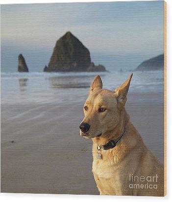 Dog Portrait @ Cannon Beach Wood Print