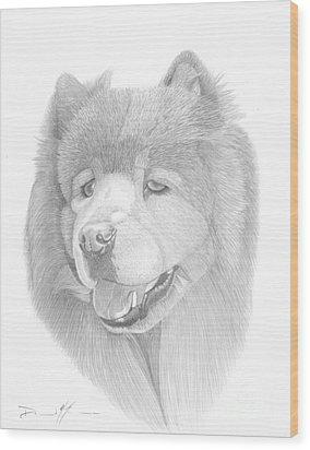 Dog Portrait Logi Wood Print
