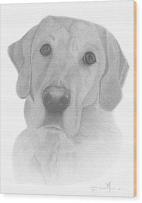 Dog Portrait Webster Wood Print