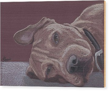 Dog Tired Wood Print by Stacey Jasmin