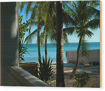 Dog's Beach Key West Fl Wood Print by Susanne Van Hulst