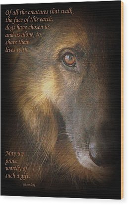 Dogs Chose Us Wood Print