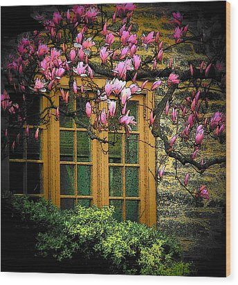 Dogwood In The Spring Wood Print by Joyce Kimble Smith