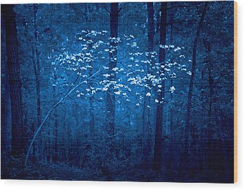 Wood Print featuring the photograph Dogwoods Of Texas by Linda Unger