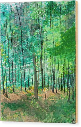Dolly Sods Trees Wood Print by David Bartsch