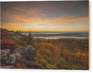 Dolly Sods Wilderness Peak Fall Sunrise Wood Print by Rick Dunnuck