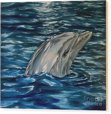 Dolphin Curiosity Oil Painting Wood Print by Avril Brand