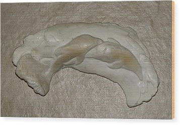 Dolphin Dream Wood Print by Lonnie Tapia