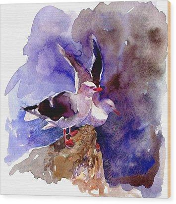 Dolphin Gulls Wood Print