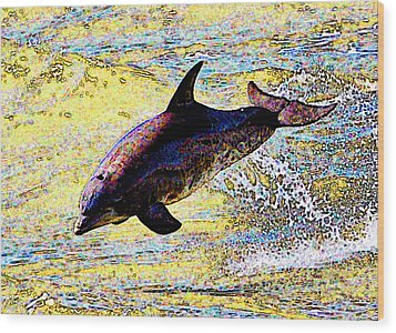 Wood Print featuring the photograph Dolphin by John Collins