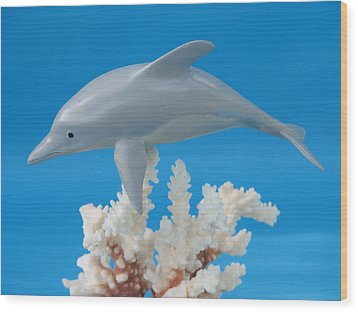 Dolphin On Coral Wood Print by Jack Murphy