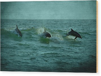 Dolphins Wood Print by Sandy Keeton