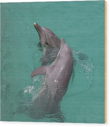 Dolphins Two Wood Print by Gwen Vann-Horn