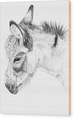 Donkey 2 Wood Print by Keran Sunaski Gilmore