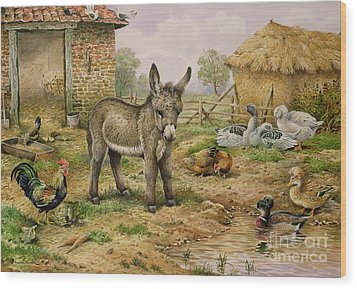 Donkey And Farmyard Fowl  Wood Print by Carl Donner