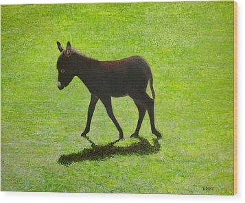 Donkey Foal Wood Print by Eamon Doyle