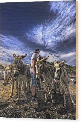 Donkey Rides Wood Print by Meirion Matthias