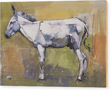 Donkey Stallion, Ronda Wood Print by Mark Adlington