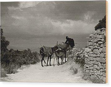 Donkey Woman Wood Print by Andrea Simon