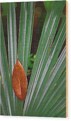 Wood Print featuring the photograph Don't Leaf by Donna Bentley