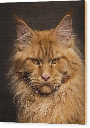 Don't Mess With Me. Wood Print by Robert Sijka