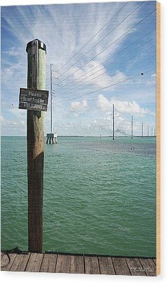 Wood Print featuring the photograph Don't Please The Pelicans by Barbara MacPhail