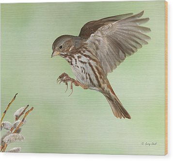 Wood Print featuring the photograph Don't Squeeze The Charmin by Gerry Sibell