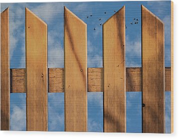 Don't Take A Fence Wood Print by Paul Wear