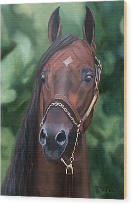 Dont Worry Saddlebred Sire Wood Print by Donna Thomas