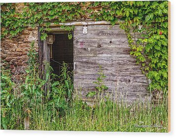 Wood Print featuring the photograph Door Ajar by Christopher Holmes