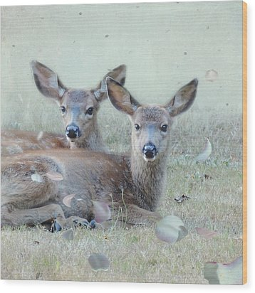 Wood Print featuring the photograph Double Gaze by Sally Banfill