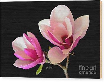 Double Magnolia Blooms Wood Print