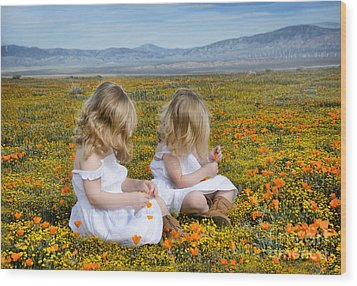 Double Take In A Poppy Field Wood Print