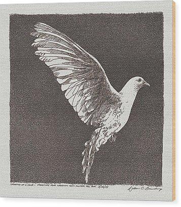 Dove Drawing Wood Print