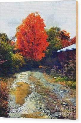 Wood Print featuring the photograph Down A Country Road - Autumn by Janine Riley