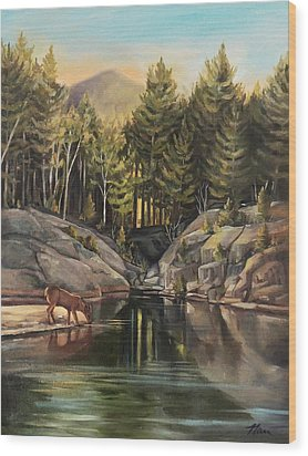 Down By The Pemigewasset River Wood Print by Nancy Griswold