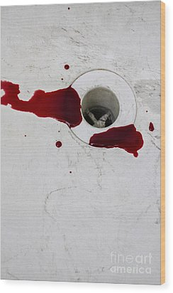 Down The Drain Wood Print by Margie Hurwich