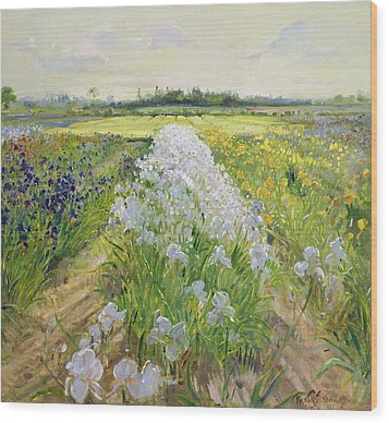 Down The Line Wood Print by Timothy Easton