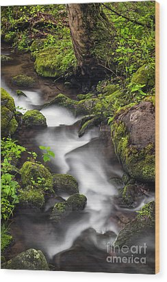Downstream From The Waterfalls Wood Print by Madonna Martin