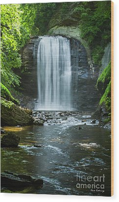 Wood Print featuring the photograph Downstream Shade Looking Glass Falls Great Smoky Mountains Art by Reid Callaway